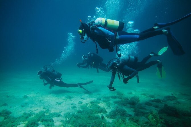 Top 4 Tips for Scuba Diving Beginners
