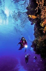 Group Scuba Diving