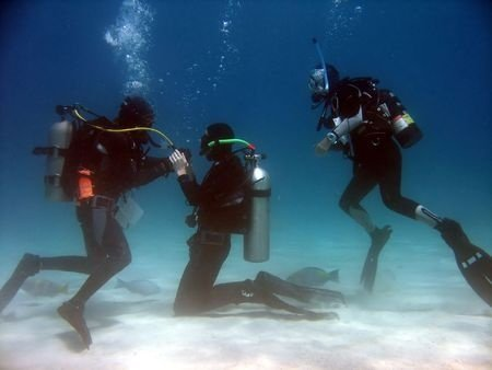 Although scuba diving takes a little getting used to, it's definitely worth the effort!