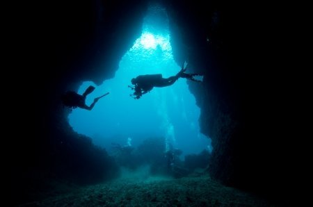 How to Adapt to Different Dive Environments