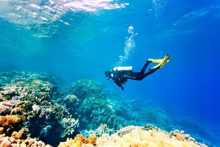 How to be an Eco-Friendly Scuba Diver This Earth Day